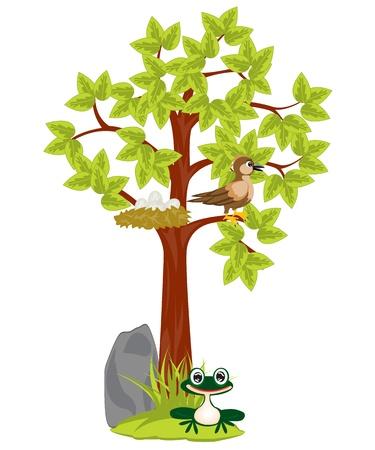 frog egg: Illustration tree with jack and bird sitting on him Illustration
