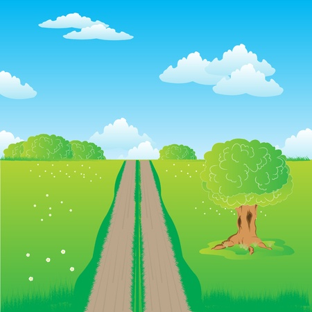 Illustration of the rural road in field with flower Stock Vector - 16454467