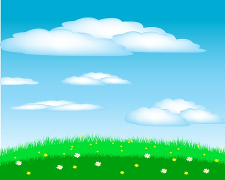 steppe: Year glade with flower on background blue sky