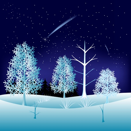 Illustration winter wood in the night Stock Vector - 17714145