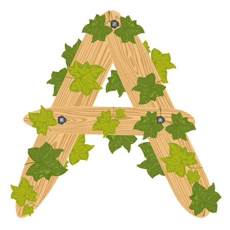 Illustration of the letter a decorated by foliage on white background Illustration