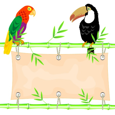 Poster on stem of the bamboo and tropical birds Vector