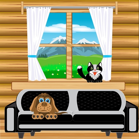 blind dog: Window in room with view on mountain landscape