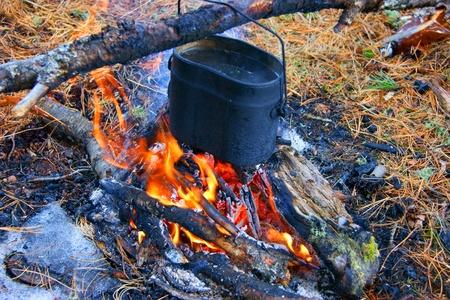 blazes: Prepare food on campfires in wood