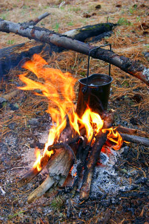 blazes: Preparation of the food in wood on campfires Stock Photo