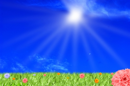 Blue sky and sun.Glade with flower and sun photo