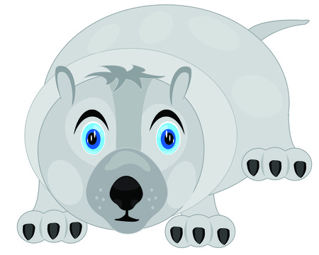 Vector illustration bear on white background is insulated Vector