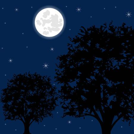 Illustration night sky on tree and stars Vector