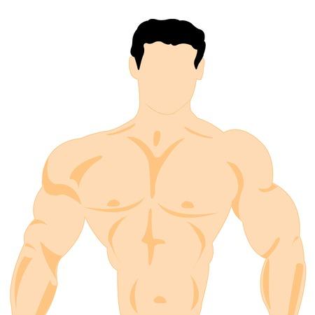nacked: Illustration trunk athlete on white background is insulated