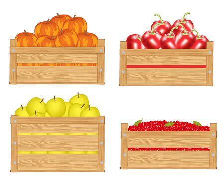 sorrel: Boxes with fruit and berry on white background Illustration