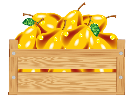 pleasing: Wooden box with ripe pear on white background