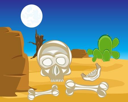 human bones: The Human bones and skull in desert.Vector illustration Illustration
