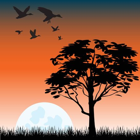 solitary: The Solitary tree on glade at night.Vector illustration Illustration