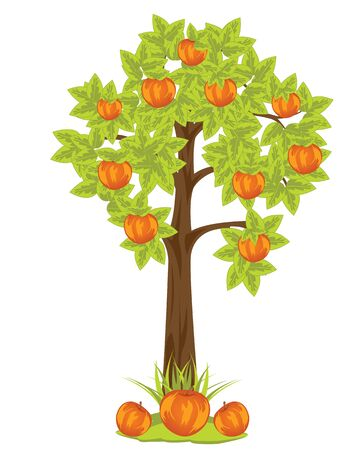 aple: The Aple tree with harvest red apple.Vector illustration