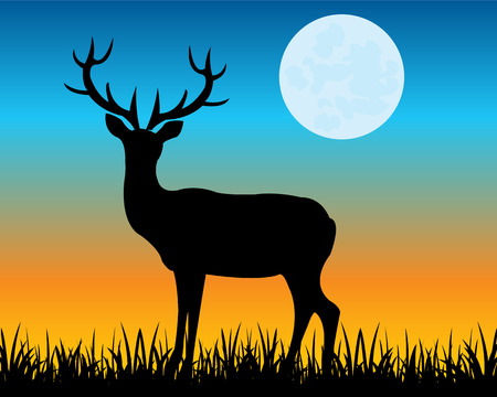 The Silhouette of the wild deer with horn on glade.Vector illustration Illustration