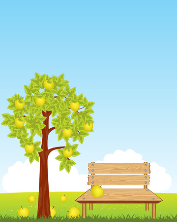 aple: The Wooden bench under aple tree with ripe apple.Vector illustration