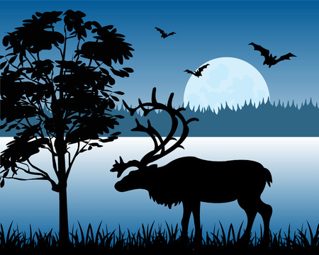 Silhouette of the deer on background of the wild nature Vector