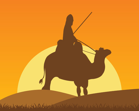 horseman: The Camel with horseman in desert on sunrise.Vector illustration