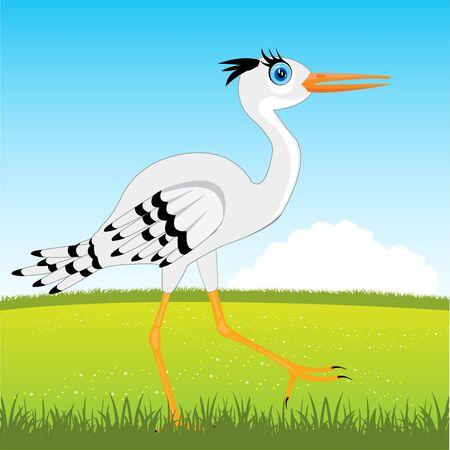 glade: The Bird stork on glade year daytime.Vector illustration