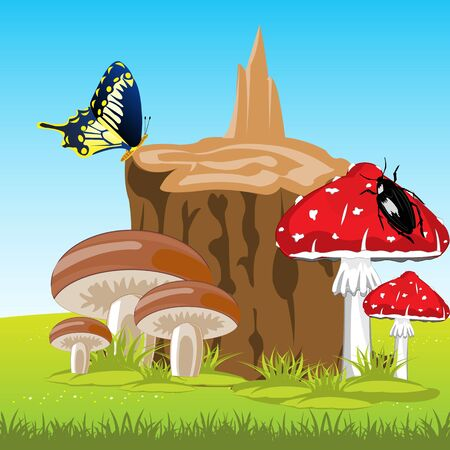 edible: Edible and poisonous mushrooms on glade beside stump