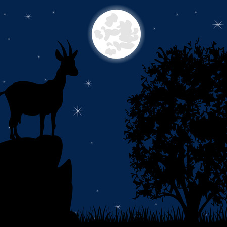 sawhorse: Silhouette wild mountain sawhorse on stone moon in the night Illustration