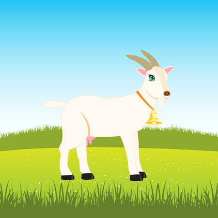 Nanny goat with campanula grazes on field with flower Illustration