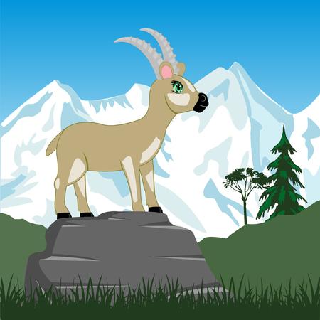snow mountains: Vector illustration wild sawhorse and snow mountains Illustration