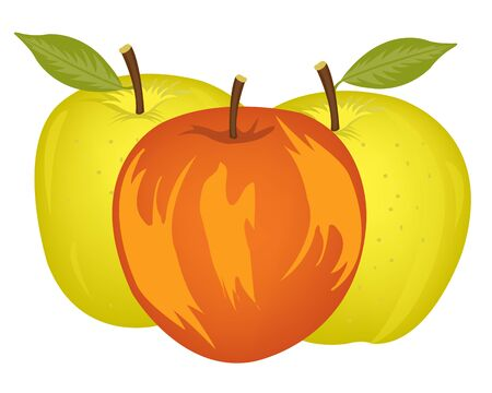 insulated: Three ripe apples of the miscellaneous of the sort on white background is insulated