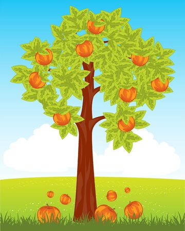 aple: Tree aple tree with ripe red apple in field Illustration