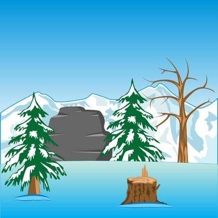 fur trees: The Beautiful landscape of the mountains and wood in winter.Vector illustration Illustration