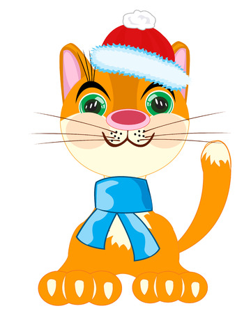 natty: Redhead cat in hat and scarf on white background is insulated