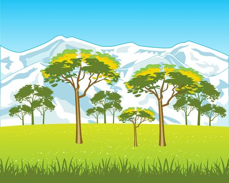 snow field: The High snow mountains and field with flower.Vector illustration Illustration