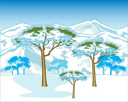 winter tree: Beautiful winter landscape of the mountains and tree