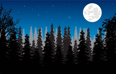 ambience: Wild landscape with wood and moon in the night Illustration