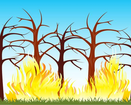 natural disaster: The Natural disaster fire in wood.Vector illustration Illustration