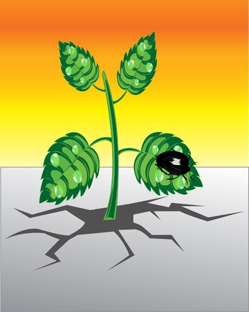 saplings: The Plant rising from rift in the land.Vector illustration