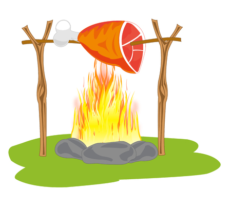 The Meat ham on fire campfires in field condition.Vector illustration