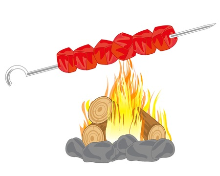 broach: Shish kebab prepared on campfires on white background