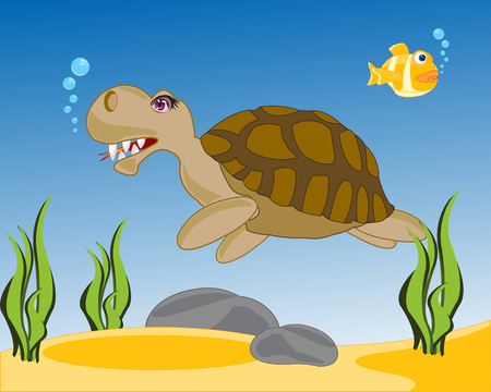terrapin: The Amphibian sea terrapin sails in water.Vector illustration