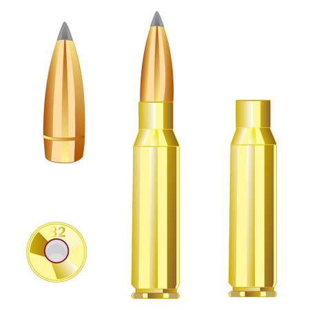 patron: Cartridge case and bullet from weapon.Vector illustration