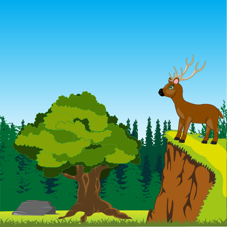 The Animal deer on peak of the mountain in wood. Vector illustration Illustration