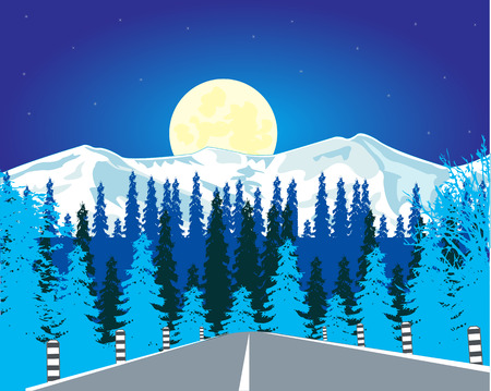 time drive: The Car road in wood in winter in the night. Vector illustration