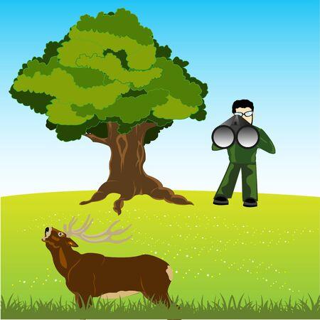 fascinação: O Huntsman na natureza n