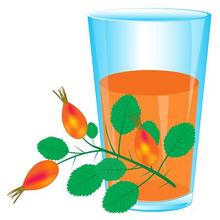 Juice and branch of the wild rose on white background is insulated Illustration