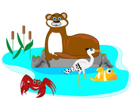 Otter in lake Illustration