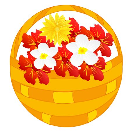 Basket full flower on white background is insulated
