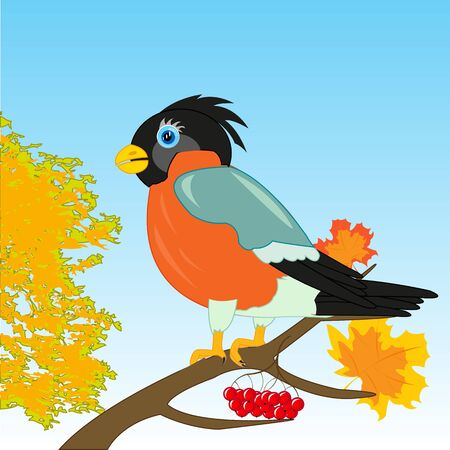 Beautiful bird bullfinch on branch tree by autumn