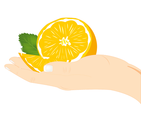 Ripe and juicy fruit tangerine in hand of the person Illustration