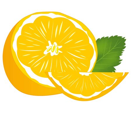 water alphabet: Ripe cut tangerine on white background is insulated Illustration