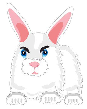 Feathery beast rabbit